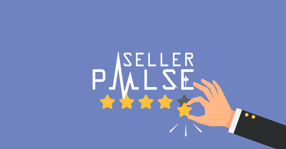 seller pulse review