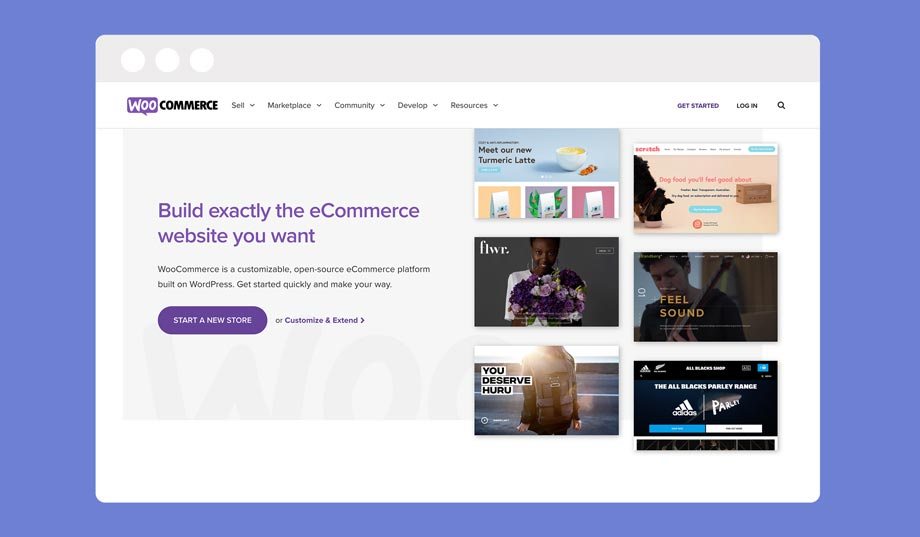 Want to dropship without Shopify? WooCommerce can do this for you!